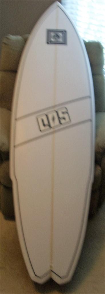 DSCI0022